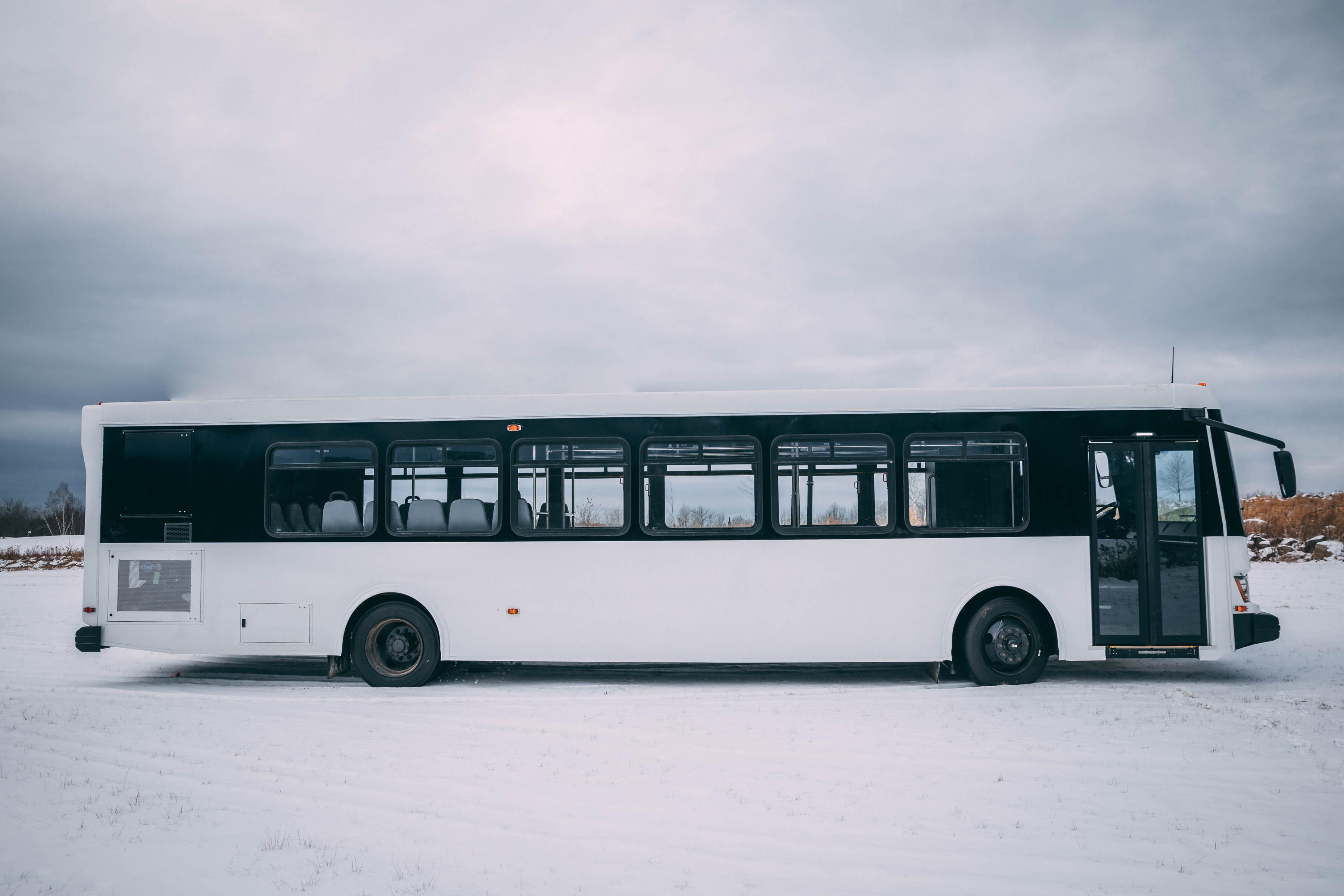 NewBus_HM-7.jpg
